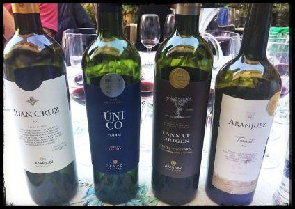 vinos tannat bolivia