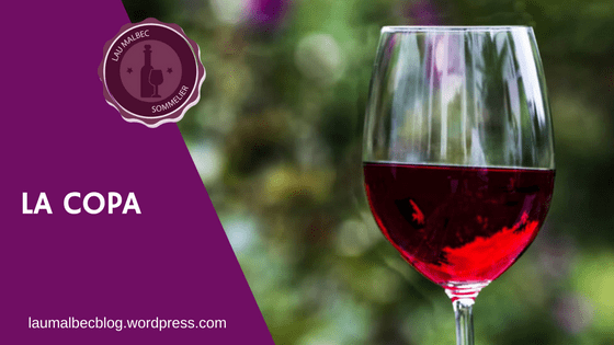 copa de vino cata